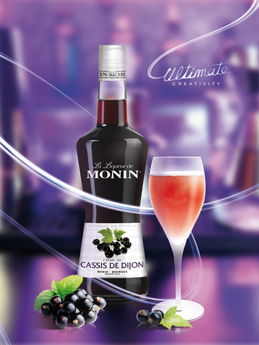 MONIN Blackcurrant liqueur