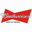 Budweiser 500ml