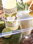 MONIN Coconut syrup (700ml)