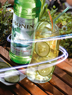MONIN Cucumber syrup (700ml)