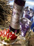 MONIN Lavender Syrup (700ml)