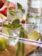 MONIN Mojito Mint syrup (700ml)